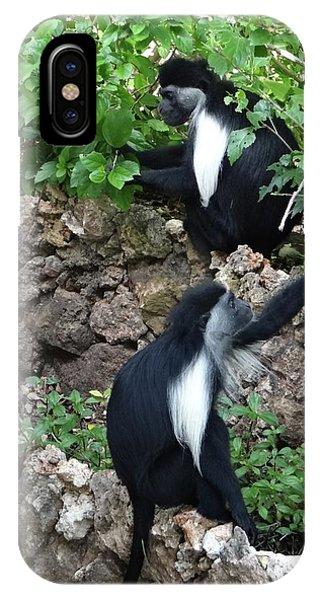 Exploramum iPhone Case - Colobus Monkey Eating Leaves For Breakfast by Exploramum Exploramum