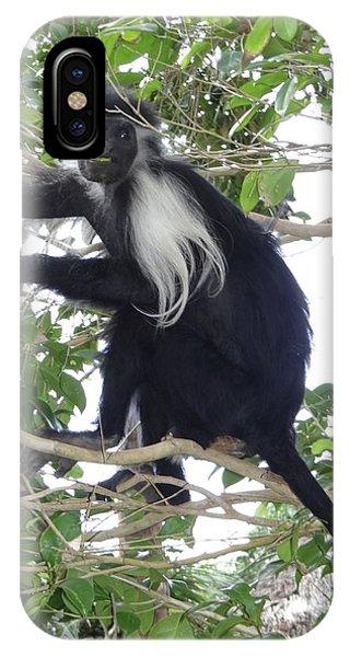 Exploramum iPhone Case - Colobus Monkey Eating Leaves In A Tree by Exploramum Exploramum