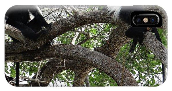 Exploramum iPhone Case - Colobus Monkeys Sitting In A Tree by Exploramum Exploramum