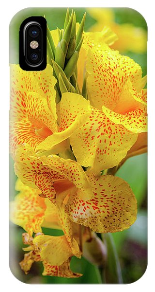 Colombia iPhone Case - Colombian Flower by Michael Weber