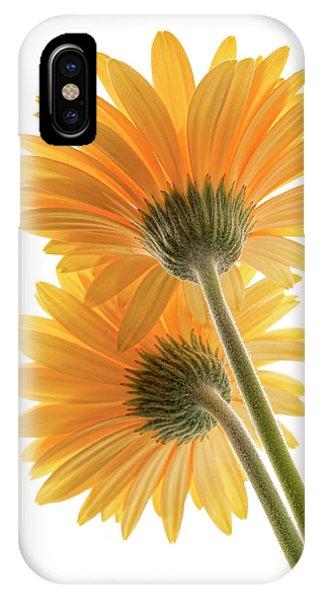 Color Me Happy IPhone Case