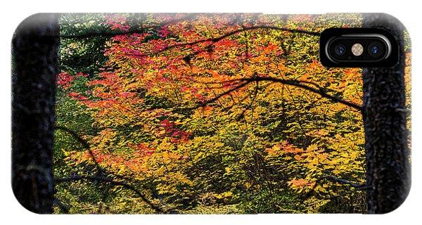 Cascade Mountain Range Fall Color IPhone Case