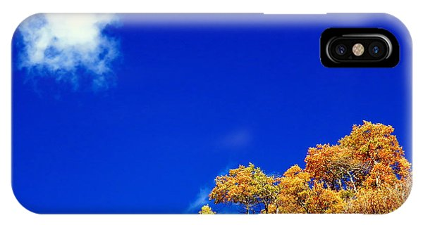 Colorado Blue IPhone Case
