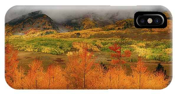 IPhone Case featuring the digital art Colorado Fall Colors  by OLena Art Brand