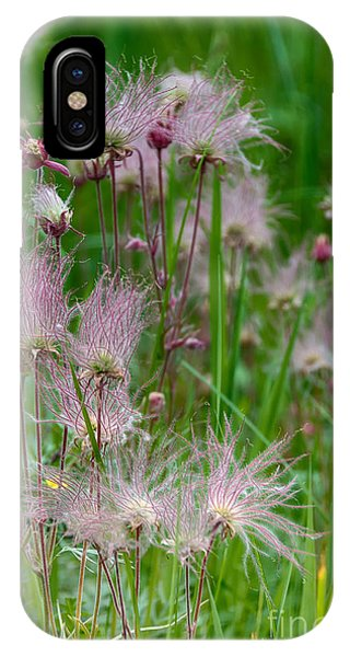 Colorado Flowers IPhone Case
