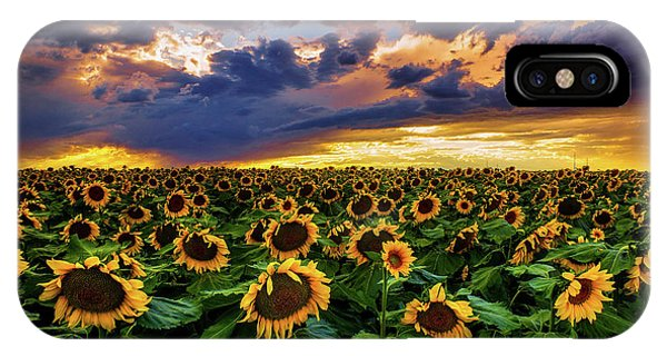 IPhone Case featuring the photograph Colorado Sunflowers At Sunset by John De Bord