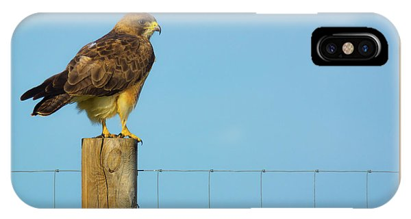 IPhone Case featuring the photograph Colorado Swainson's Hawk Perched by John De Bord