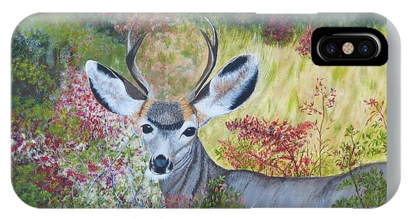 Colorado White Tail Deer IPhone Case