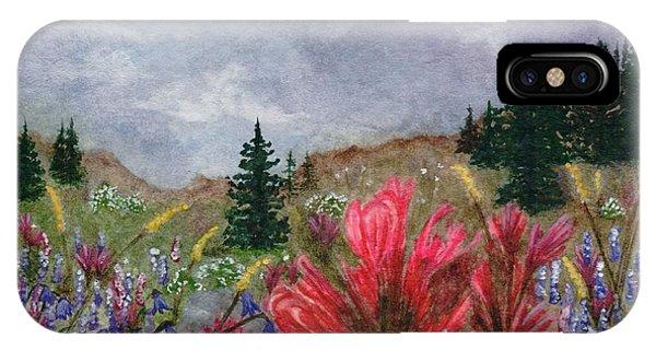 Scarlet Paintbrush iPhone Case - Colorado Wildflowers by Angela Koehler