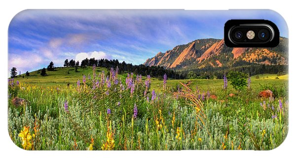 Landscape iPhone Case - Colorado Wildflowers by Scott Mahon