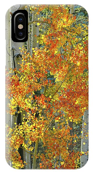 Colorful Aspen Along Million Dollar Highway IPhone Case
