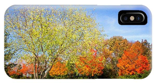 Colorful Backyard Scene IPhone Case