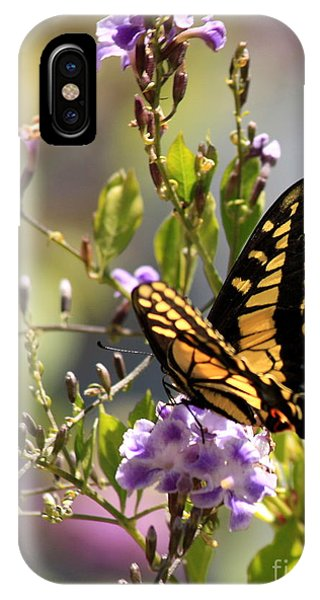 Golden Gardens iPhone Case - Colorful Butterfly by Carol Groenen