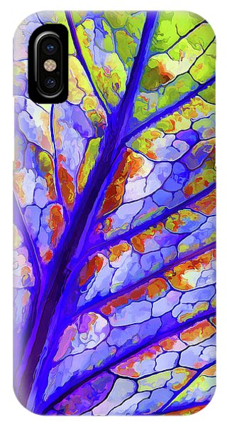 Colorful Coleus Abstract 6 IPhone Case