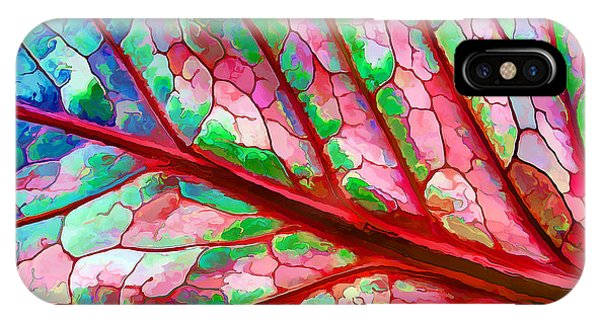 Colorful Coleus Abstract 5 IPhone Case
