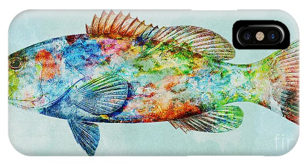 Colorful Gag Grouper Art IPhone Case