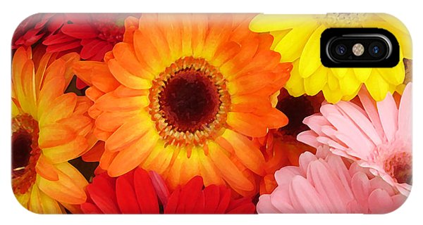 Colorful Gerber Daisies IPhone Case