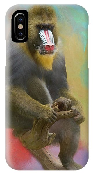 Colorful Mandrill IPhone Case