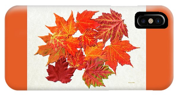 Colorful Maple Leaves IPhone Case