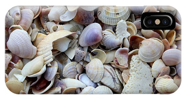 Colorful Shells IPhone Case