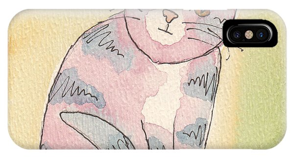 Colorful Tabby IPhone Case