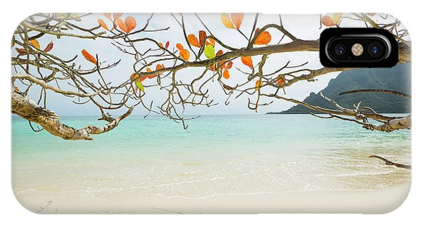 Colorful Tree North Shore IPhone Case