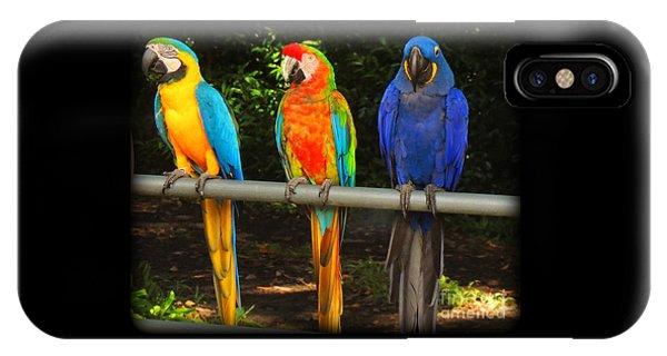 Colorful Trio IPhone Case