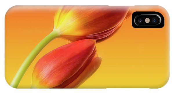 Orange Color iPhone Case - Colorful Tulips by Wim Lanclus