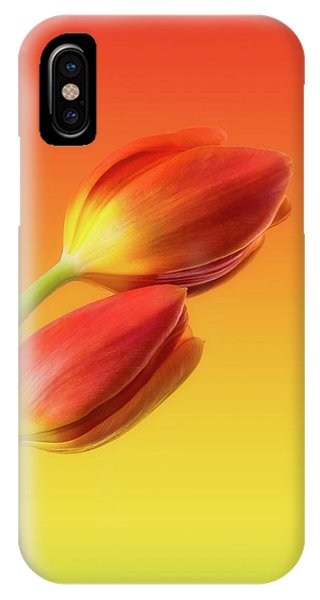 Background iPhone Case - Colorful Tulips by Wim Lanclus