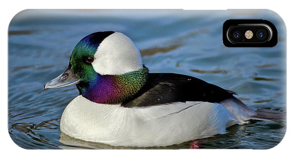 Colorful Waterfowl IPhone Case