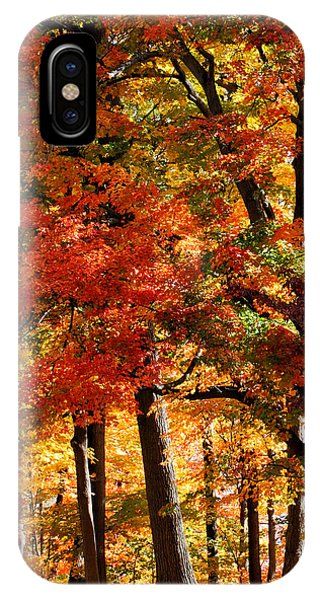 IPhone Case featuring the photograph Colors Of Fall by William Selander
