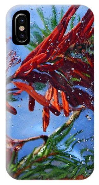 Colors Of Nature IPhone Case