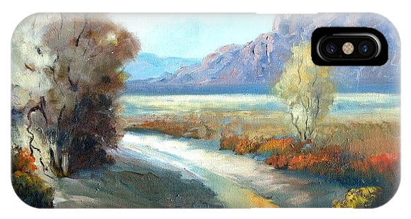Colors Of The Desert Phone Case by Sally Seago
