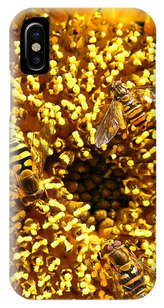 Colour Of Honey IPhone Case