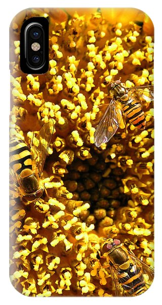 Colour Of Honey IPhone Case