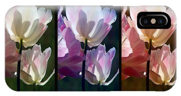 Coloured Tulips IPhone Case
