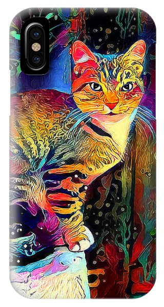 Colourful Calico IPhone Case
