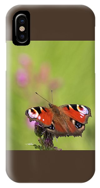 Colours Of Summer IPhone Case