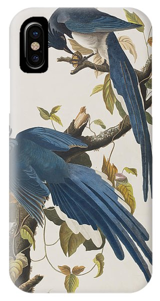 Columbia Jay IPhone Case