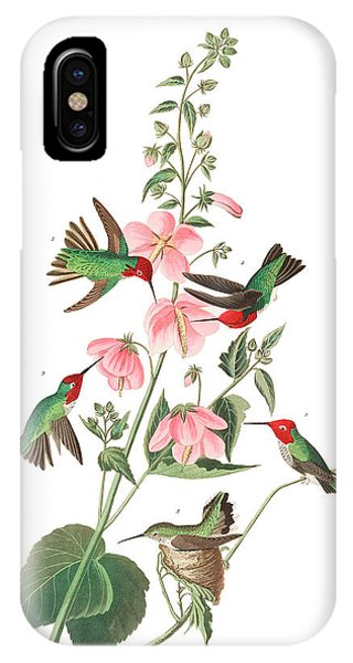 Humming Bird iPhone Case - Columbian Humming Bird by John James Audubon