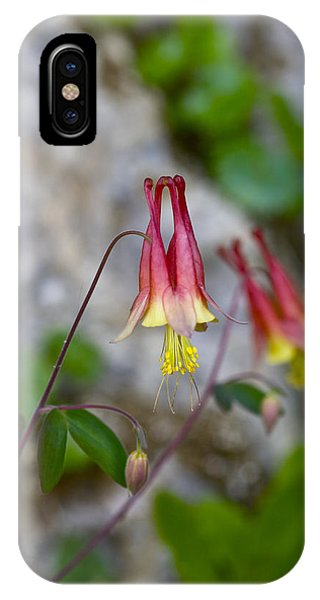 Columbine IPhone Case