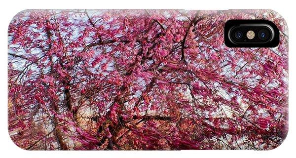 Columnar Sargent Cherry 1 IPhone Case