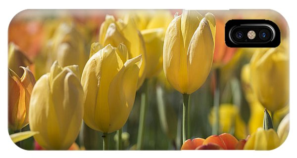 Coming Up Tulips IPhone Case