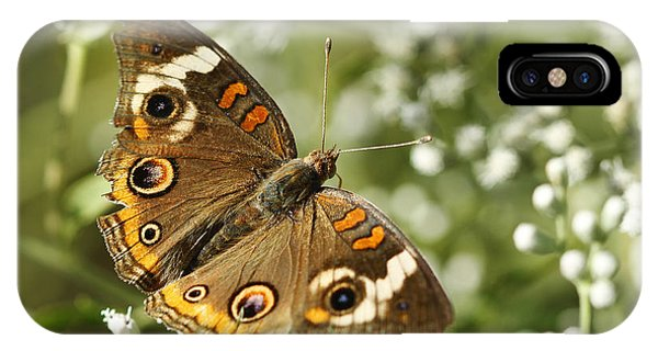 Common Buckeye Butterfly On White Thoroughwort Wildflowers IPhone Case
