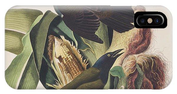 Common Crow IPhone Case