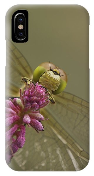 Common Darter Dragonfly IPhone Case