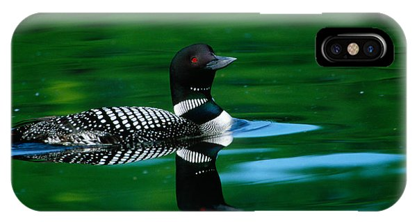 Common Loon In Water, Michigan, Usa IPhone Case