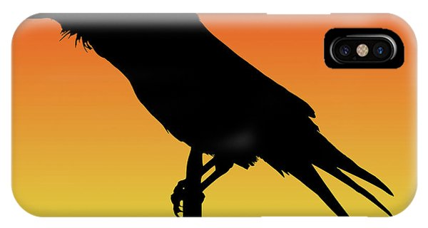 Common Raven Silhouette At Sunset IPhone Case