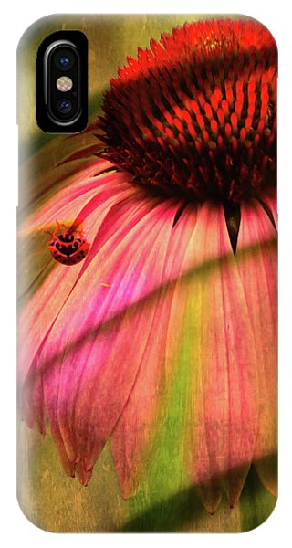 Cone Flower And The Ladybug IPhone Case