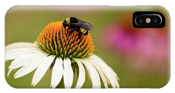 Coneflower And Bee IPhone Case
